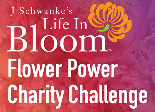 Life in Bloom Flower Power Charity Challenge!